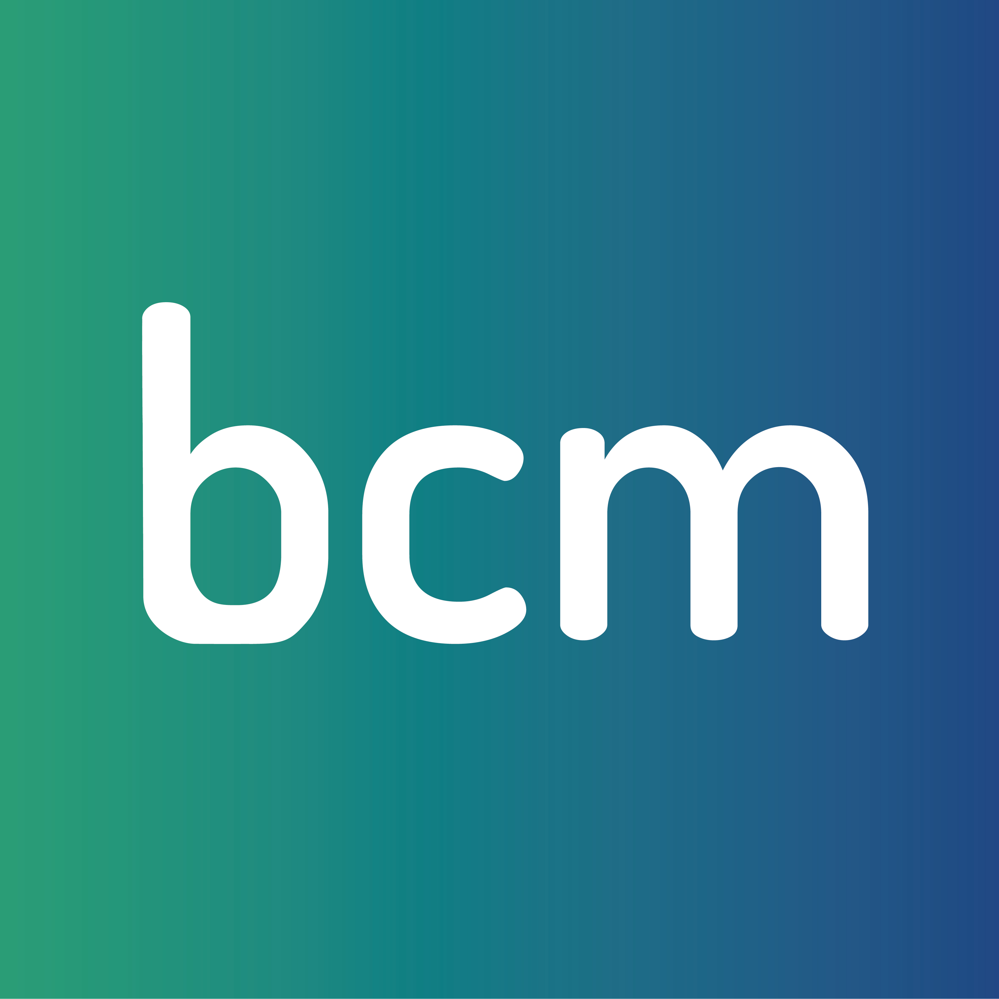 Business Commercial Management SRL Logo